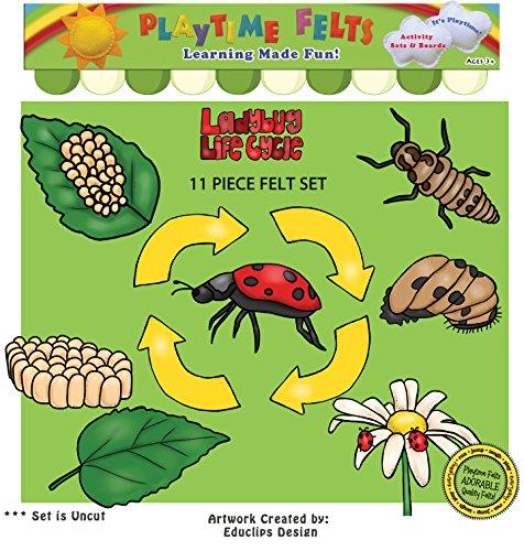 Ladybug Life Cycle Felt Board Figures By Playtime Felts
