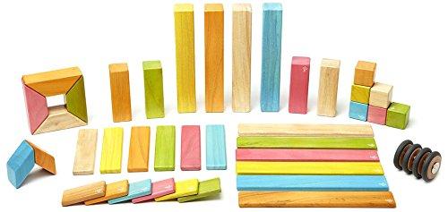 42 Piece Tegu Magnetic Wooden Block Set Tints