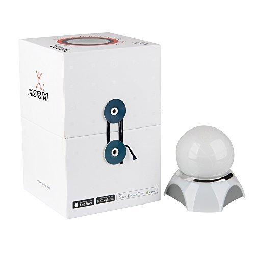 MSRM Smart Ball The App-Enabled Robotic BallPet Ball