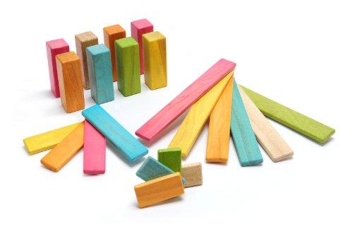 22 Piece Tegu Endeavor Magnetic Wooden Block Set Tints
