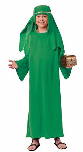 Forum Novelties Biblical Times Shepherd Green Costume Robe Child Small