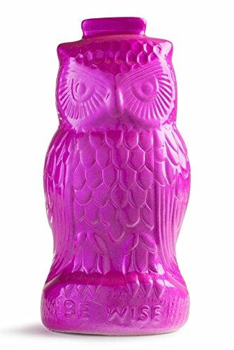 Owl Coin Bank - Ceramic Vintage Looking Purple