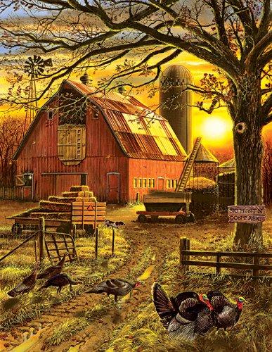 Sunset Barn a 1000-Piece Jigsaw Puzzle by Sunsout Inc
