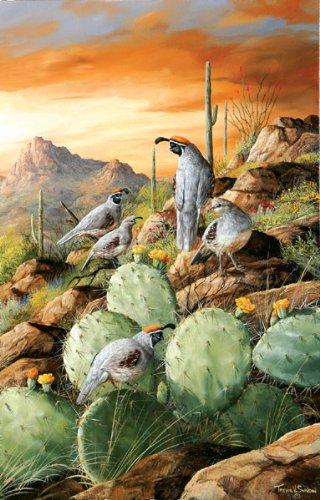 Trevor Swanson Sonoran Sunset Jigsaw Puzzle 1000pc