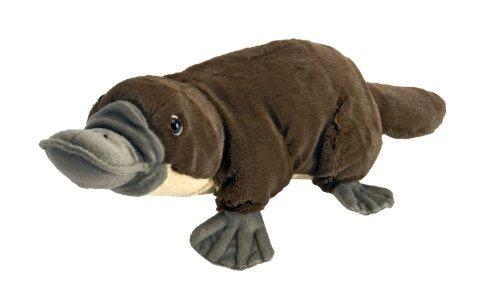 Platypus Cuddlekins Plush Toy 18 L