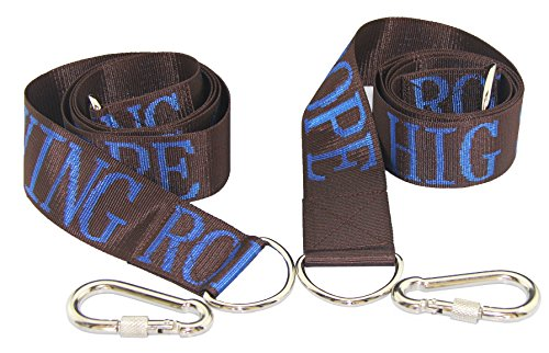 HIG Tree Swing Straps - Safety Swing Handing Rope Adjustable and Easy Installation Swing Rope With Heavy-Duty Hooks 59Long 2Wide Set of 2 StrapsCoffee