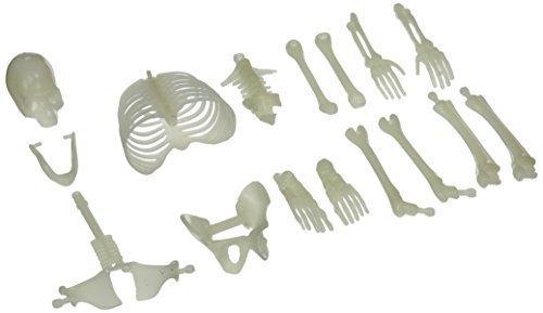 Glow in the Dark Skeleton Box of Bones Action Figure by US Toy