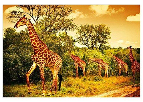 VICTORY-JigsawWooden Jigsaw Puzzles for Adults Kids Cute Animals1000pc-Giraffe