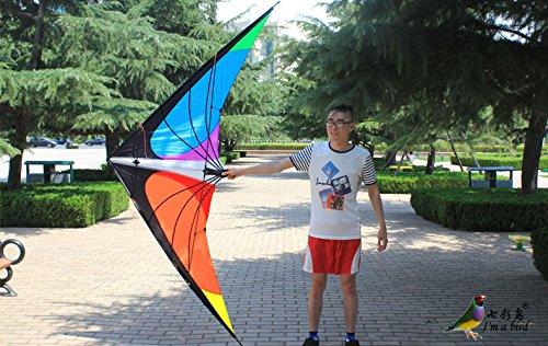 Sangdo NEW 59ft 18m Stunt Power Kite Outdoor Sport fun Toys novelty dual line Delta