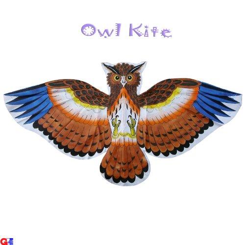 Kids Kites - Pack of 2 Pre-colored Owl Kites - Handmade Chinese Kites