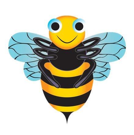 SkyBugz DLX Nylon Kite Set of 4 - Bee Butterfly Ladybug and Dragonfly