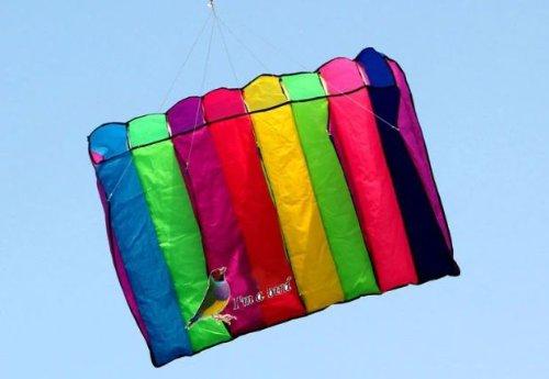 8 Hole Galaxy Single Line Control Parachute Parafoil Foil Kite Outdoor Beach Garden Fun