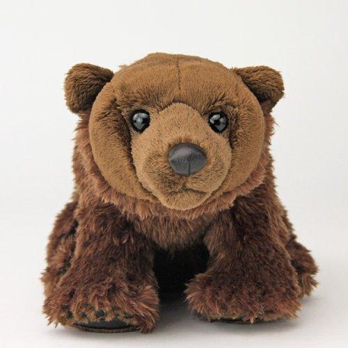 Real Stuffed Brown Bear