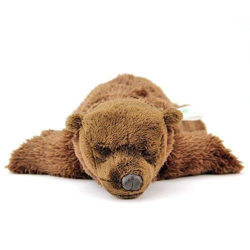 Real Stuffed Brown Bear Sleeping Child