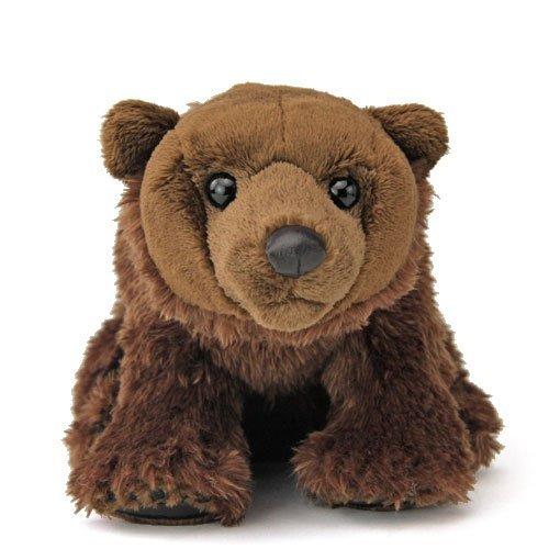 Realistic stuffed brown bear