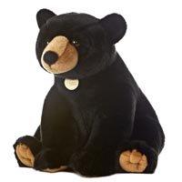 Stuffed Black Bear
