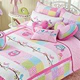 Cozy Line Pink Owl 2 Pcs Quilt Set for KidsGirls Bedding Owl Twin - 2 Piece Owl Twin - 2 Piece