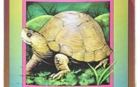 Canned-Critters-Stuffed-Animal-Land-Turtle-6-14.jpg