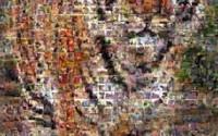 Photomosaics-Tiger-Jigsaw-Puzzle-513pc-18.jpg