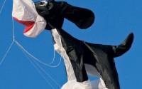8-ft-Skippy-Kite-Line-Laundry-15.jpg