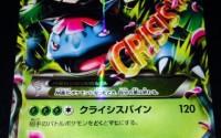XY-Pokemon-Card-Mega-Venusaur-EX-Holo-Rare-002-Japanese-25.jpg