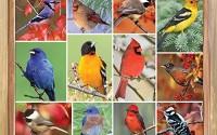 Springbok-Puzzles-Songbirds-Jigsaw-Puzzle-1000-Piece-1.jpg