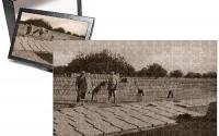 Photo-Jigsaw-Puzzle-of-Making-Mud-Bricks-Cyprus-13.jpg