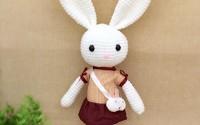 HYST-Pastel-Rabbit-Handmade-Amigurumi-Stuffed-Toy-Knit-Crochet-Doll-Baby-Bunny-Animal-Toy-White-with-Dress-35.jpg