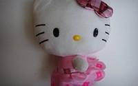 HE-Hello-Kitty-12-Sanrio-Plush-Stuffed-Toy-with-Pink-Plaid-Bow-Dress-74.jpg